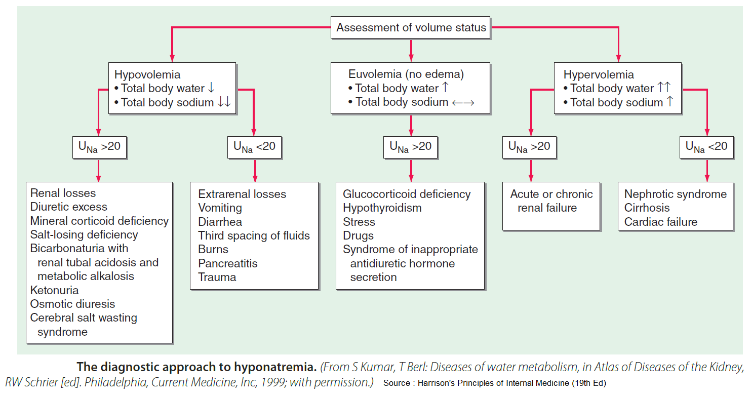 Causes Of Hyponatremia Differential Diagnosis Algorithm Hypovolemia Grepmed