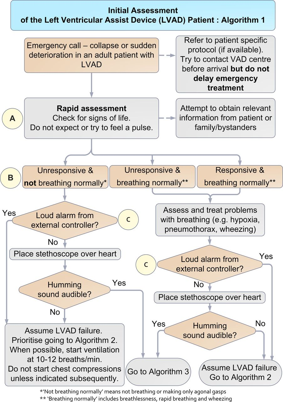 c856f45f3c8 Initial assessment of the left ventricular assist device (LVAD) patient  (Algorithm 1)