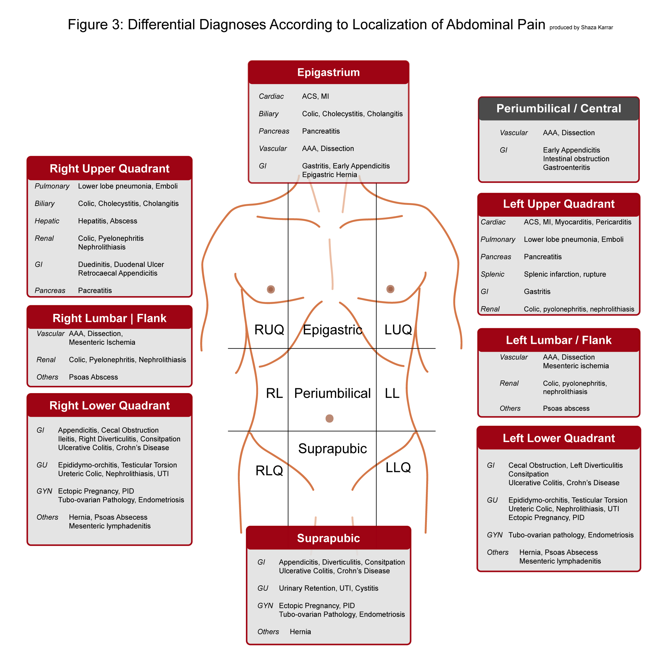 Abdominal Pain - Differential Diagnosis According to Localization of Abdominal Pain   Abdominal pain can originate from
