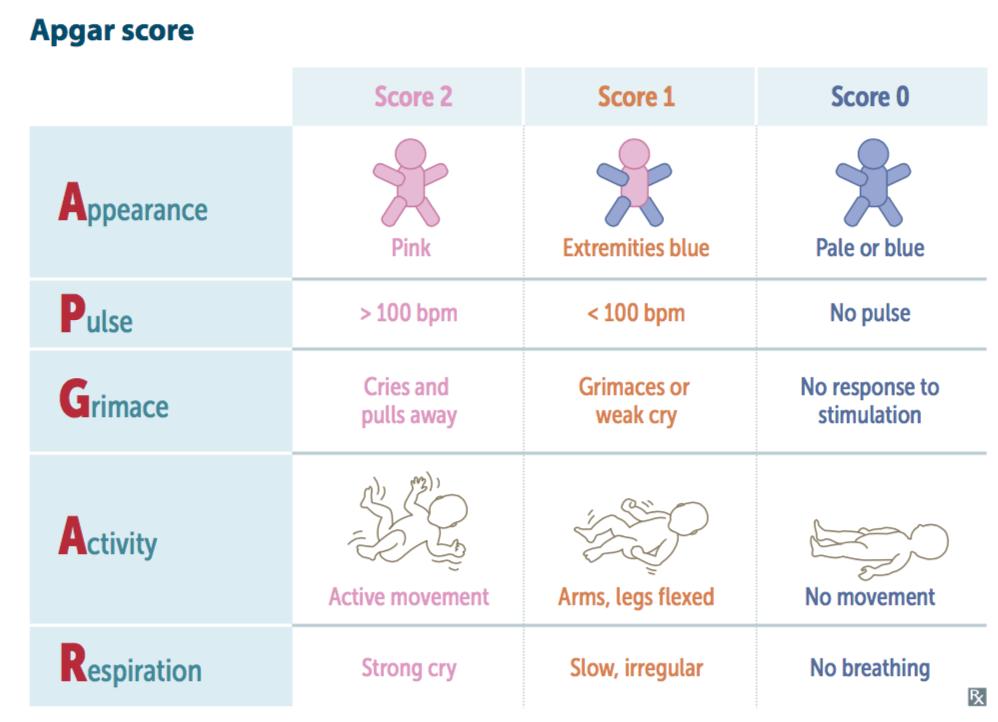 Newborn Assessment Apgar Score Assessment Of Newborn Grepmed Assessment of physical maturity charact eristics of newborn ð. newborn assessment apgar score