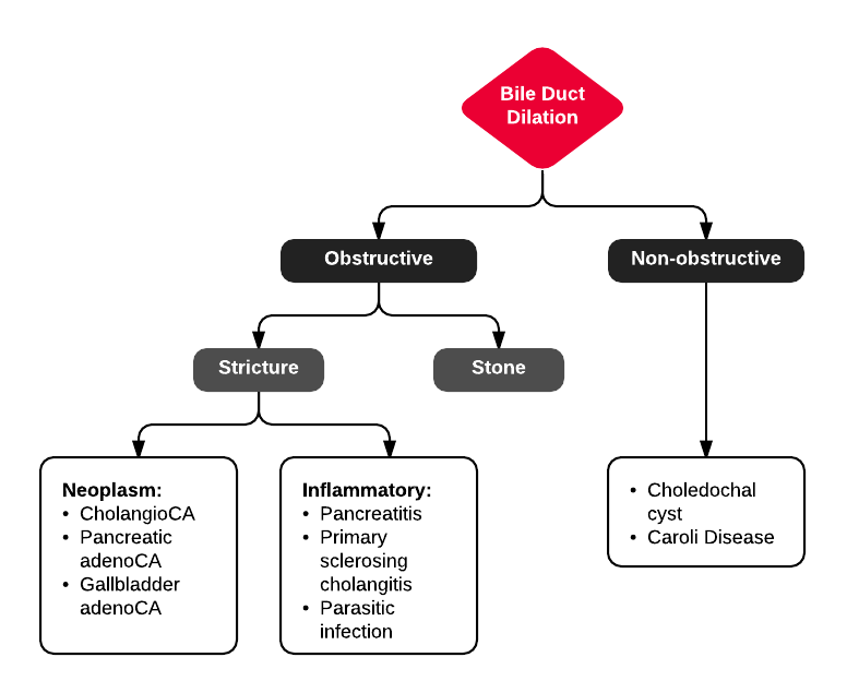 Differential Diagnosis Of Biliary Duct Dilation Diagnosis Em Im