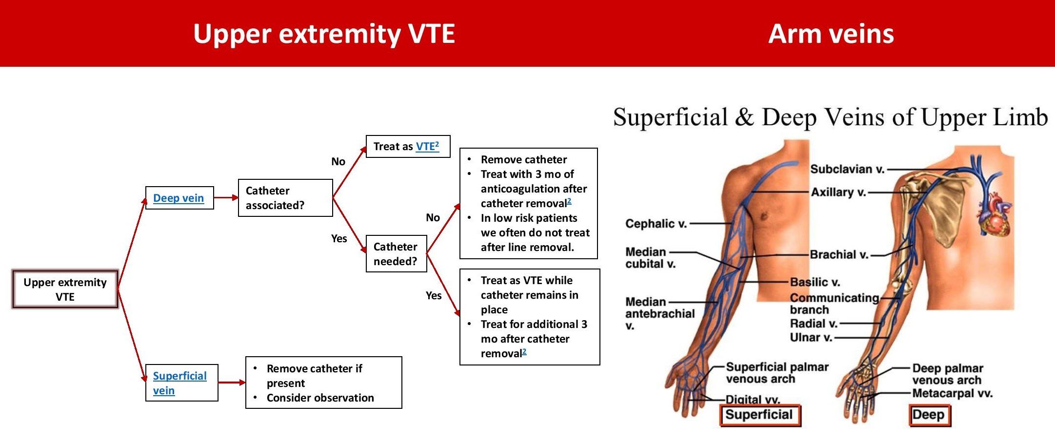 Upper Extremity Venous Thrombosis Management And Anatomy Br Deep