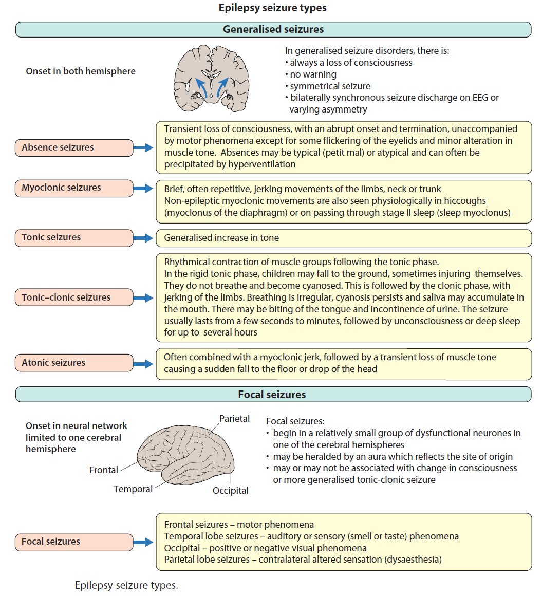 Epilepsy Seizure Types - Generalized vs Focal Generalized Seizures