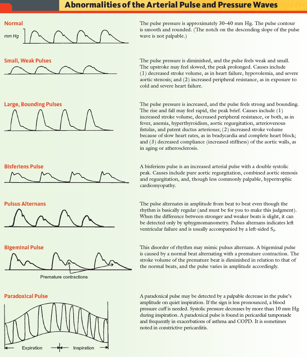Abnormalities Of The Arterial Pulse And Pressure Waves Br Small