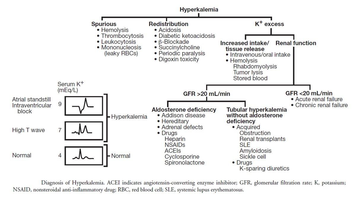 Hyperkalemia - Differential Diagnosis Algorithm  #Hyperkalemia #Differential #Algorithm #Diagnosis #Nephrology