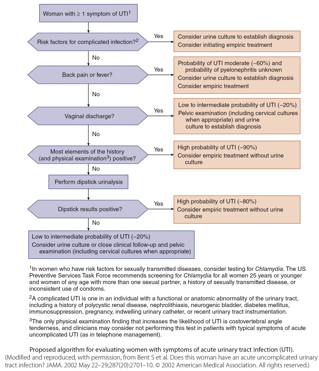 Algorithm For Evaluating Women With Symptoms Of Acute Urinary Tract Infection Uti Uti