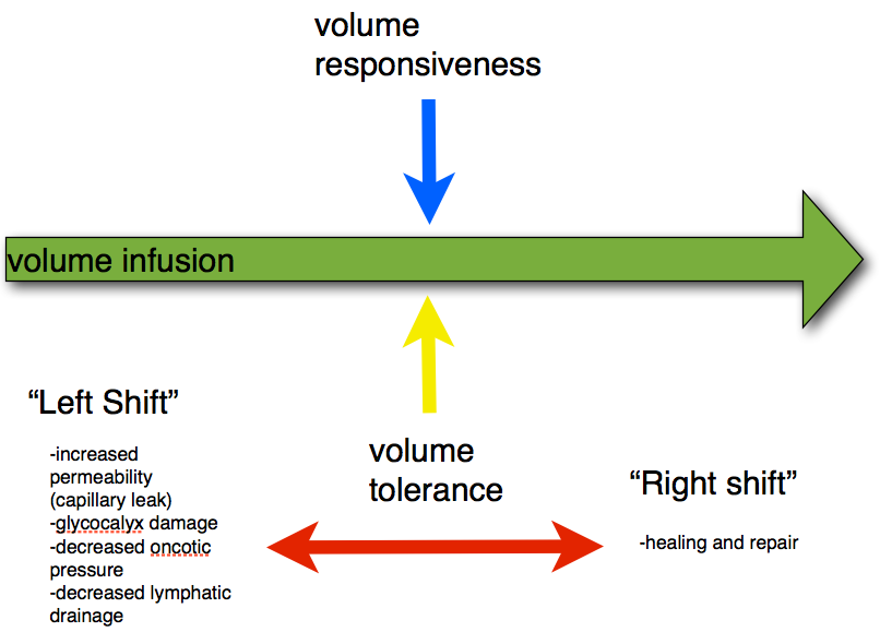 Conceptual Relationship between Volume Responsiveness and Volume Tolerance <BR> Assessing for volume responsiveness would only tell you that