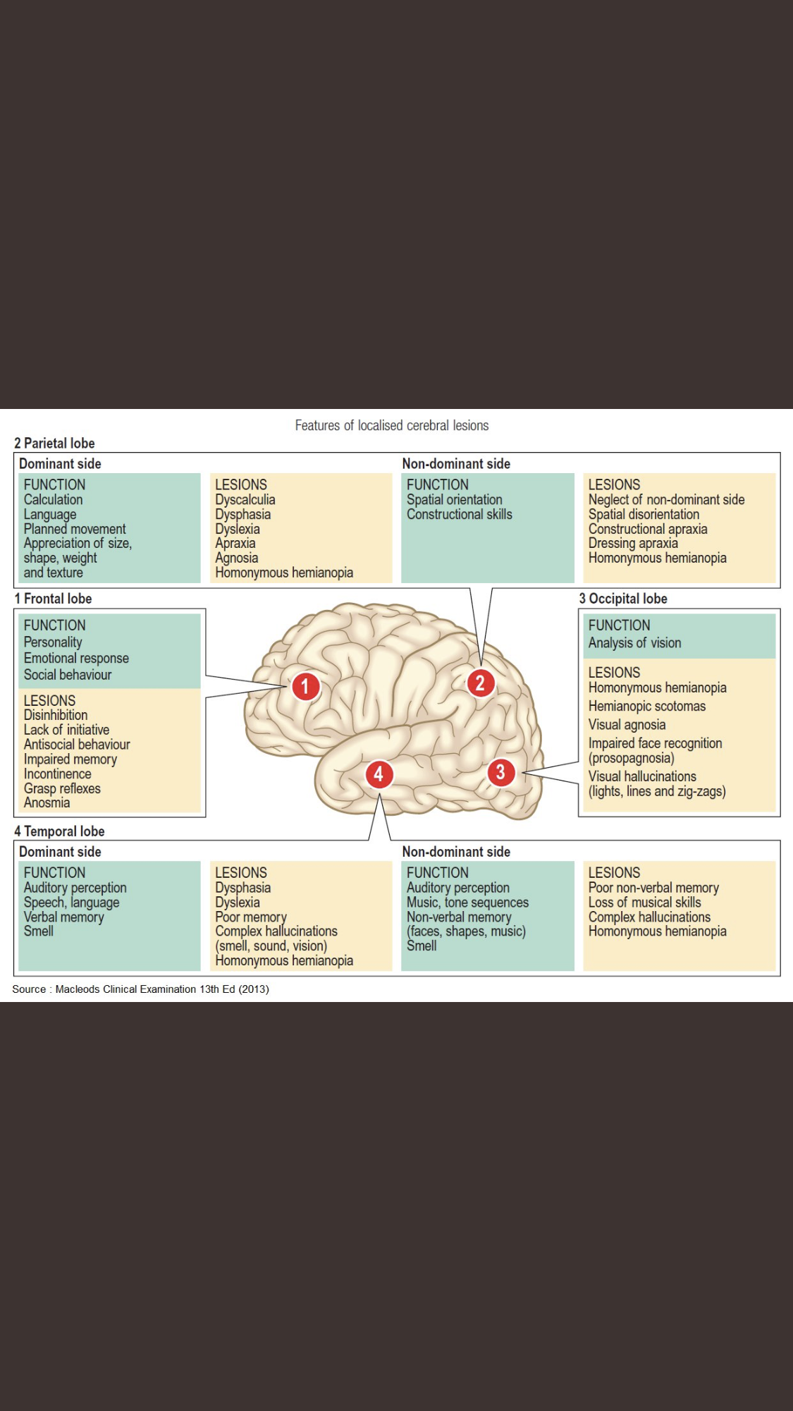 #Localizations for #brain injuries and lesions