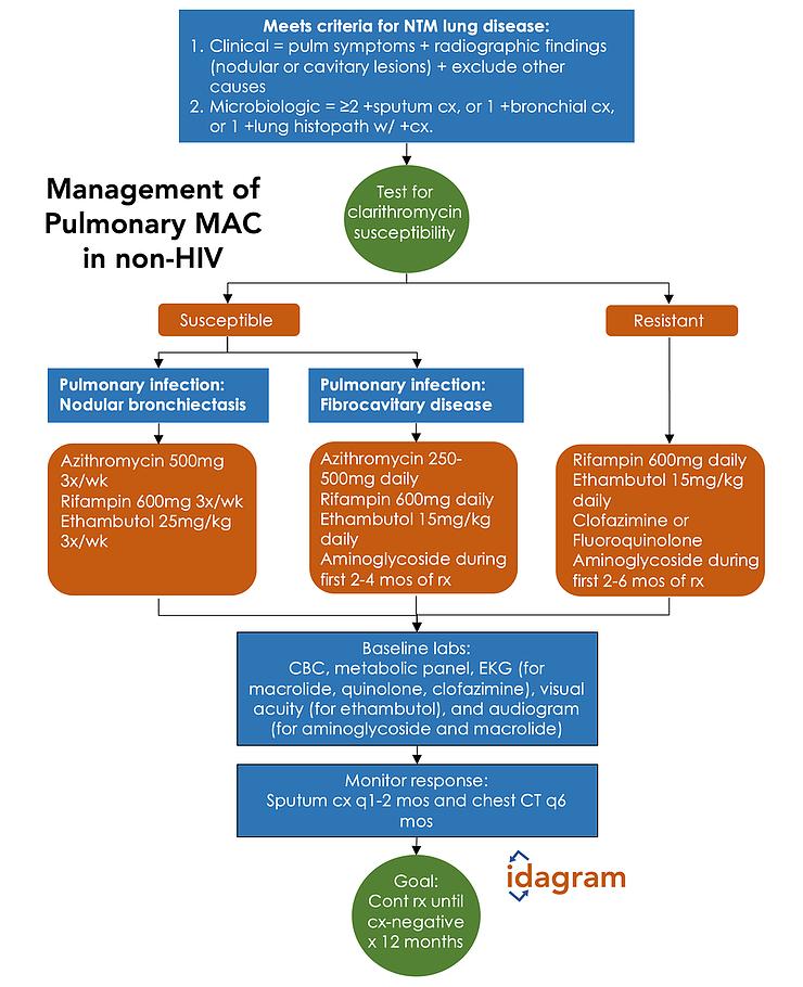 Management of Pulmonary Mycobacterium avium complex in non-HIV patient  - Infographic by IDagram @ID_agram   #MAC #Mycobacterium #avium