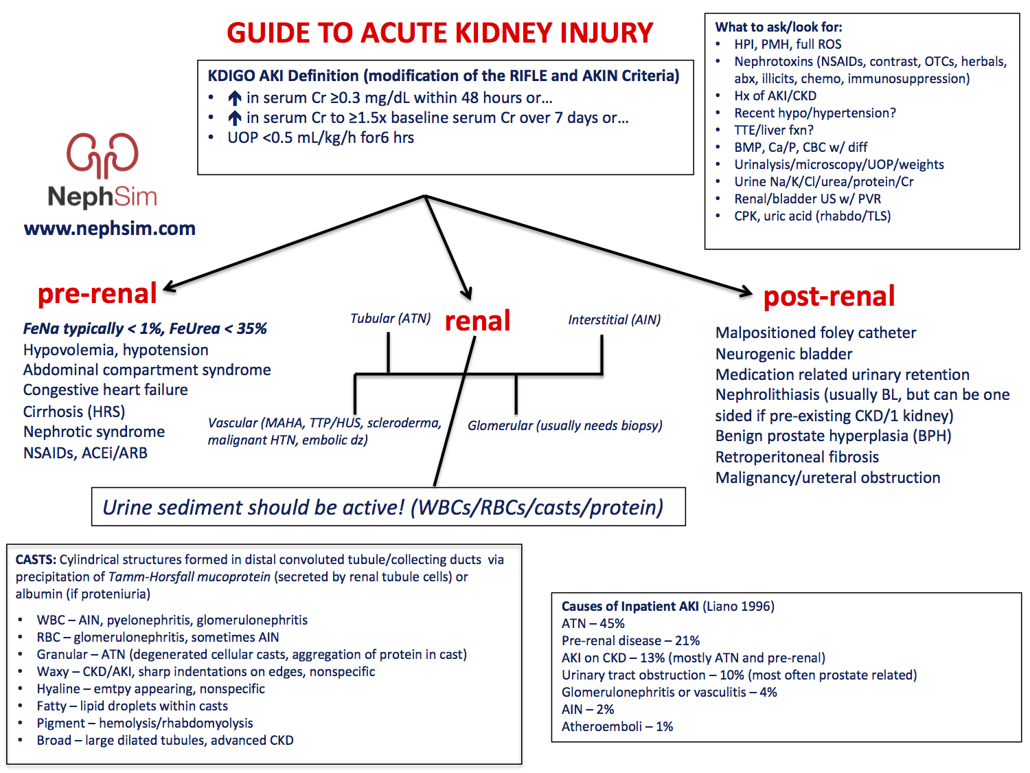 Guide To Acute Kidney Injury Aki What To Ask Look Grepmed