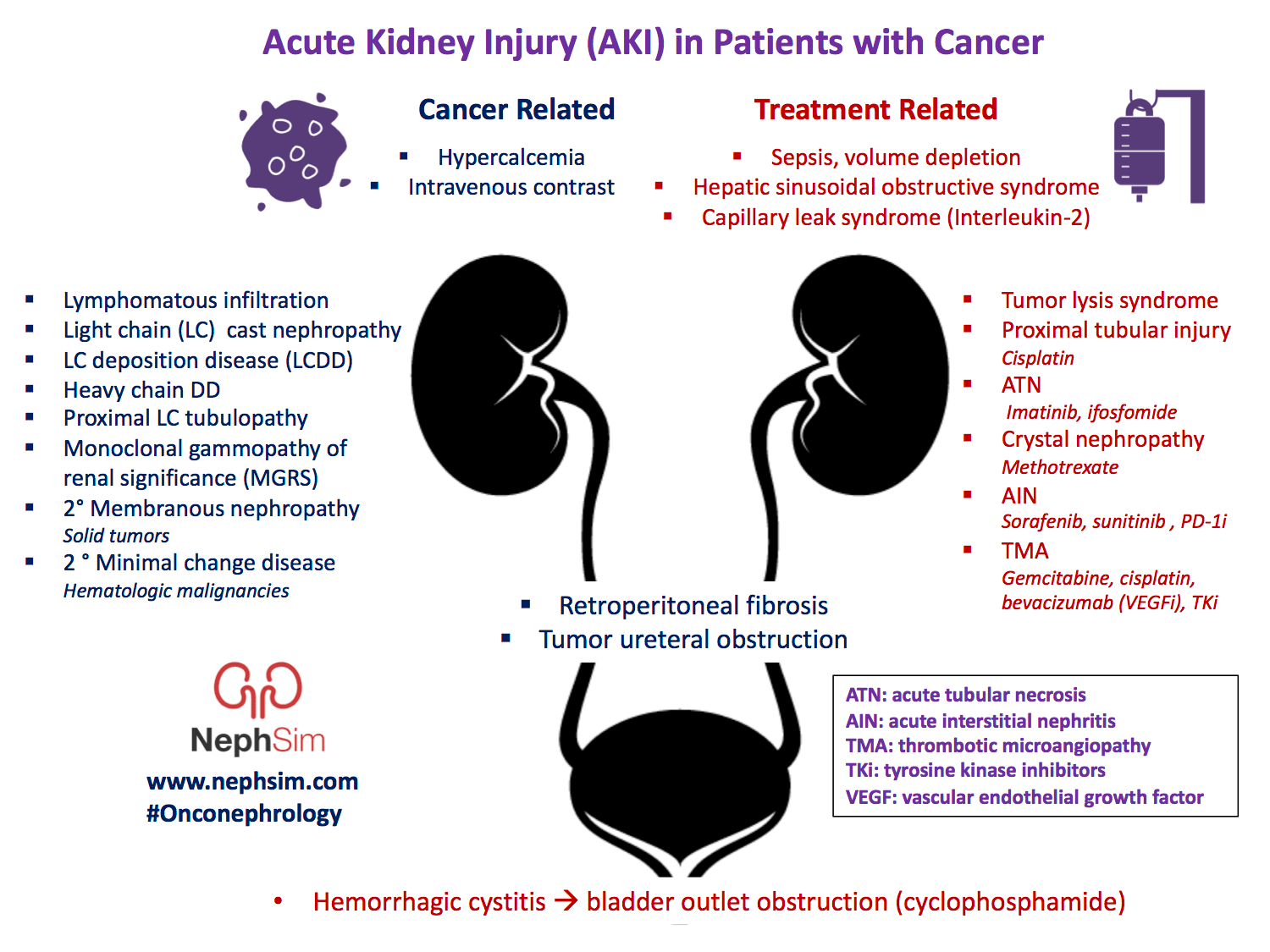 Acute Kidney Injury Aki In Patients With Cancer Cancer Related Hypercalcemia