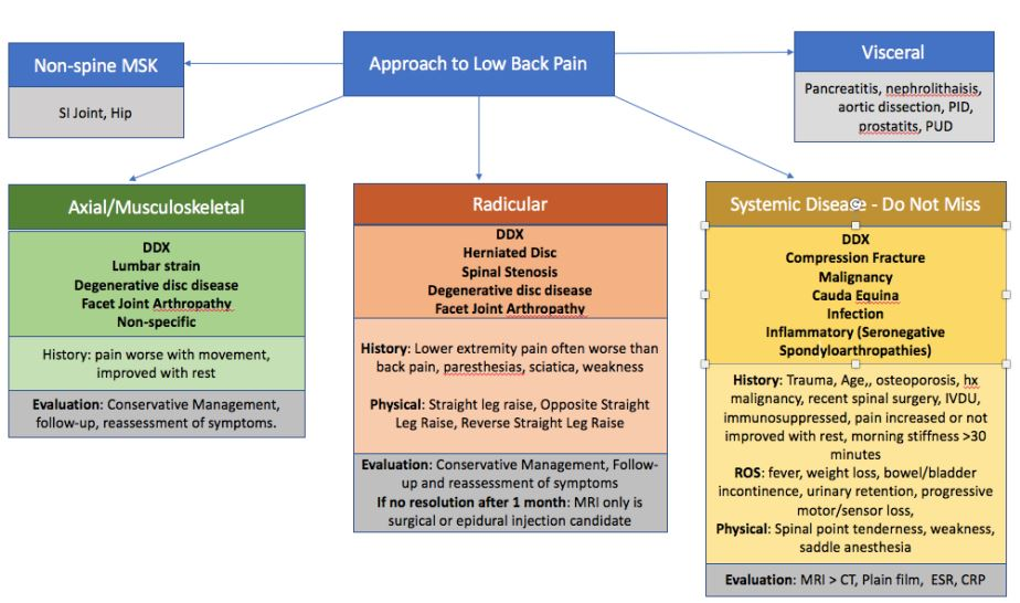 Approach To Low Back Pain Differential Algorithm Non Msk Axial Musculoskeletal