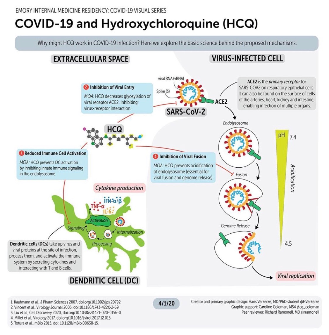 Hydroxychloroquine in COVID-19 - How might hydroxychloroquine help combat a COVID-19 infection?