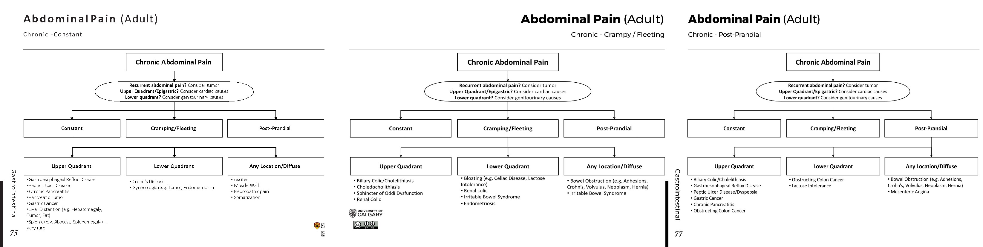 Chronic Abdominal Pain Differential Diagnosis Algorithm Constant Chronic Fleeting Post Prandial Upper Quadrant