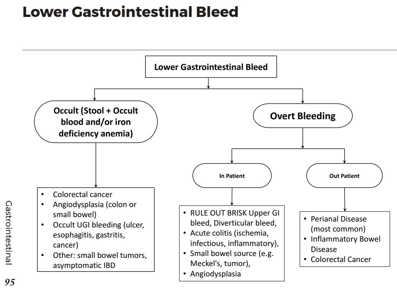 Occult And Lower Gastronintestinal Bleed Differential Diagnosis Algorithm Occult Stool Occult