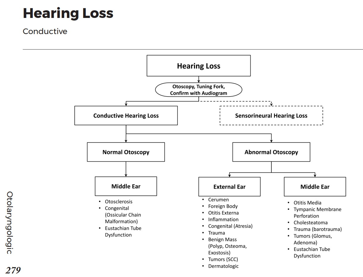 Conductive Hearing Loss Differential Diagnosis Algorithm Normal Otoscopy Middle Ear