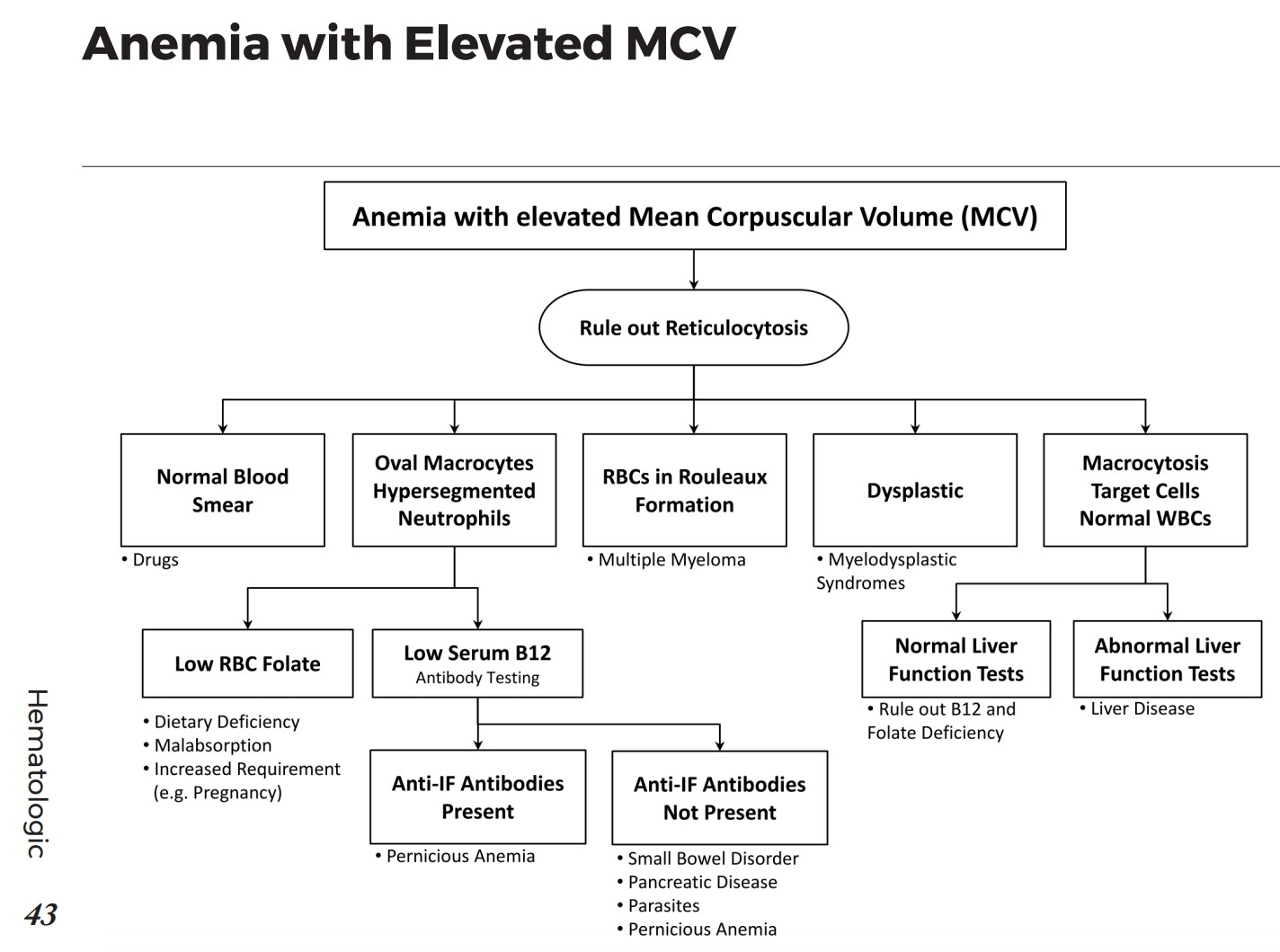Causes of Anemia with elevated Mean Corpuscular Volume (MCV) - Differential  Diagnosis