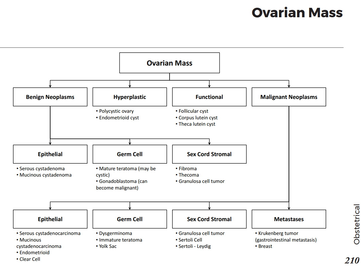 Causes Of Ovarian Mass Differential Diagnosis Algorithm Hyperplastic Polycystic Ovary
