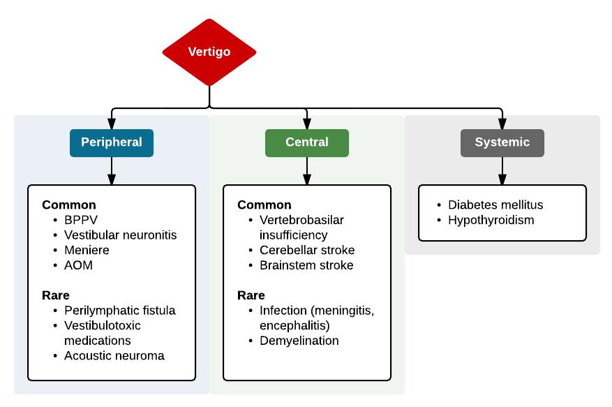 Causes Of Vertigo Differential Diagnosis Algorithm Diagnosis Neurology Dizziness Peripheral Central Algorithm